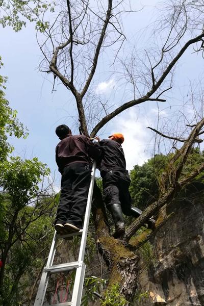 郴州苏仙区万华岩风景区美化风景效果确保安全观景